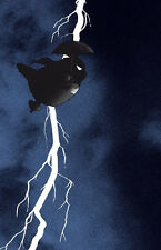 Raid 71 The windy knight returns screen print poster Totoro, batman