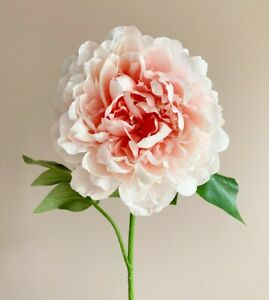 Large Coral Pink Peony, Realistic Artificial Luxury Faux Silk Flower Single Stem
