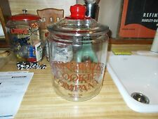 SPRINGWATER COOKIE COMPANY 2 GALLON JAR WITH RED KNOB LID