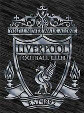 Stencil Liverpool logo Football Reusable Pattern Wall Art Sport