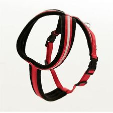 Company of Animals Comfy Harness - Red - Large