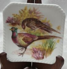 Royal Adderley PHEASANTS Mallard Ducks Dish England Countryside Bone China Plate