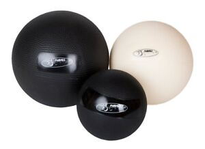 FitBALL Body Therapy Ball Exercise Rehab  (Single)