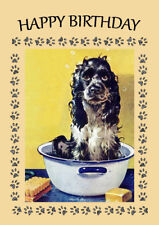 COCKER SPANIEL HAVING A BATH COMIC DOG  BIRTHDAY GREETINGS NOTE CARD