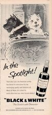 "1959 Black & White PRINT AD Scotch ""In the Spotlight!"" at the Opera Dogs"