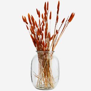 Large Clear Glass Vase, Botanical Bottle Jar, Flower Stem Vase, 18x27cm MS