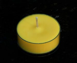 10pk 120hr/pk DAFFODILS Floral Scent ECO SOY TEA LIGHT Natural CANDLES Gift Box