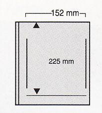SAFE Variant-Blatt im 10er Pack Art.-Nr. 863