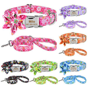 Personalised Flower Girl Dog Collar or Lead Set Custom Engraved Name ID Tag S-XL