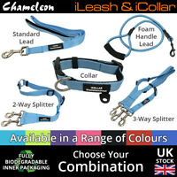 Colour Coordinated Leads, Leashes, Collars, 2 Way & 3 Way Splitters 8 colors