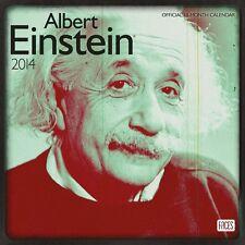 ALBERT EINSTEIN - 2014 Wall Calendar