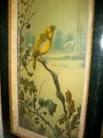 1890s LONG NARROW WINTER BIRD PRINT VICTORIAN VELVET WOOD GESSO FRAME WOOD BACK