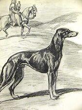 Megargee Proud Black Saluki on the Egypt Desert 1953 Dog Art Print Matted