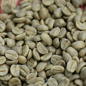 Raw Unroasted Green Coffee Beans Origin Coffee - PERFECT FOR HOME ROASTING!