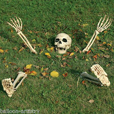 5 Piece Halloween Horror Buried Alive Skeleton Garden Yard Lawn Decoration