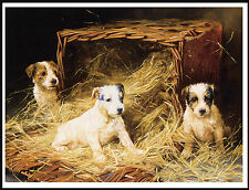 Jack Russell Fox Terrier Pups In Stable Charming Period Image Dog Print Poster