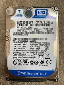 """250GB WD Scorpio Blue 2.5"""" SATA II Laptop / Notebook HDD 5400RPM 8MB 9.5mm"""