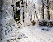 Monsted Mork Peder Forest In Winter Print 11 x 14    #3227