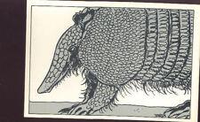 TARDI Jacques Dinosaure carte postale cp 2/8 postcard postkaart postkarte 1982