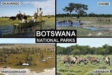 SOUVENIR FRIDGE MAGNET of BOTSWANA NATIONAL PARKS