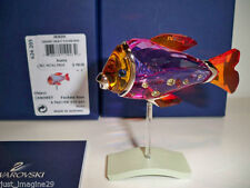 Swarovski Camaret Fish #626205 Brand New In Box Paradise Color Rare Retired