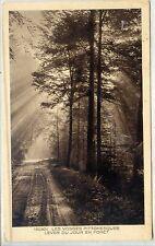 CP 88 Vosges - Les Vosges Pittoresques - Lever du jour en forêt