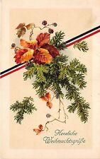 BG14888  fir branch  christmas weihnachten  germany
