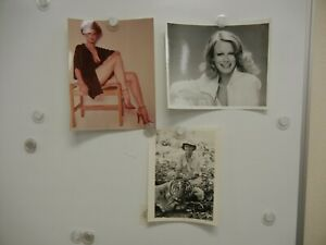 Lot of 3 Shelly Hack Photos MINT