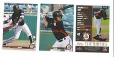 2018 SAN JOSE GIANTS TEAM SET COMPLETE MINORS SAN FRANCISCO W/ SANDRO FABIAN