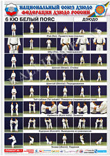 Posters Judo. White belt 1 poster.The technique of judo.