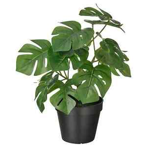 FEJKA Artificial Potted Green Monstera Plant for indoor and Outdoors Flora 32cm