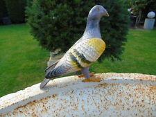 OISEAU  , un pigeon statue en fonte pat de ces couleurs .
