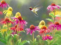 Hummingbird Oil painting Giclee Art Printed on canvas L2079