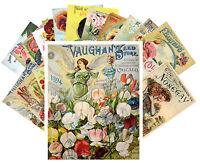 Postcards Pack [24 cards] Flowers Vintage Seed Pocket Garden Roses CC1017