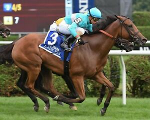 LADY ELI 8X10 PHOTO HORSE RACING PICTURE JOCKEY