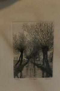 Litografie firmate Agostino Zaliani 50×35