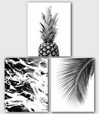 Set Of Three Pineapple, Ocean, Palm Leaf Prints, Black And White Art, Unframed