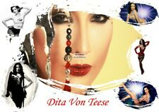 """Dita Von Teese """"Queen of Burlesque"""" 8""""X10"""" Photographs Many to Choose From"""