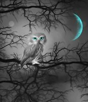Black White Teal Owl Tree Moon Home Decor Wall Art Matted Picture