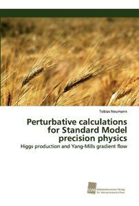 Perturbative Calculations For Standard Model Precision Physics