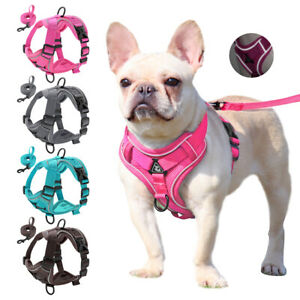 Mesh Reflective Dog Harness No Pull Breathable Pet Cat Puppy Walking Collar Vest