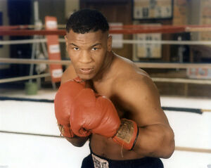 Heavyweight Champion MIKE TYSON Glossy 8x10 Photo Boxing Pose Print Poster