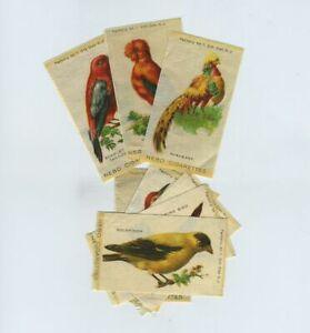 (8) Early Vintage NEBO Cigarette Tobacco Silks BIRDS Scarlet Tanager etc yz8171