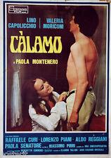 manifesto 2F originale CALAMO Lino Capolicchio Valeria Moriconi 1976