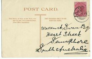 RPPC Steamer P. E.Telegraph Bay India One Anna stamp cancelled D/R Aden 1904