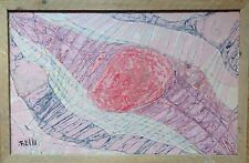 Robert TRELLU 1922-2004.L'Ecorce du Crépuscule.Acrylique.SBG.38x60.Encadré