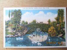 OLD POST CARD VINE ARCH BRIDGE CENTRAL PARK NEW YORK UNUSED CIRCA1910 EXC COND