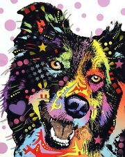 Border Collie Dean Russo Animal Contemporary Dog Print Poster 8x10