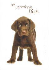 Postcard Germany Labrador Retriever Hund dog chien Tier animal Haustier pet fun