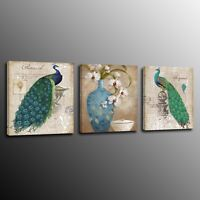 Canvas Print Peacock Bird Picture Painting Wall Art Home Decor Poster 3pcs